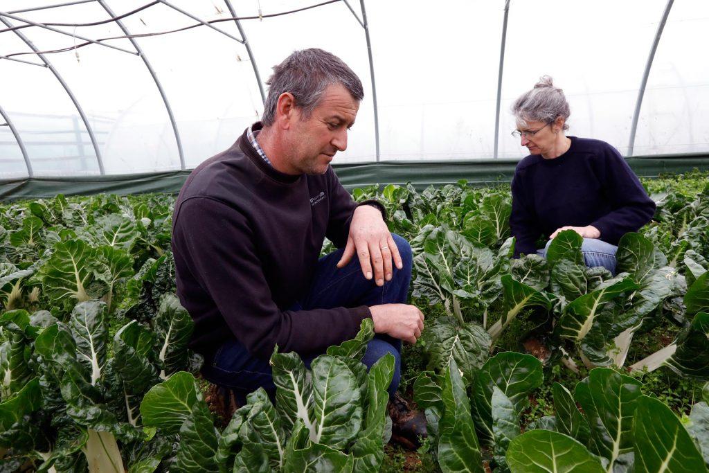 Toutenpot TRANSFORMATION soupes Compotes Conserves fruits et légumess Agricole